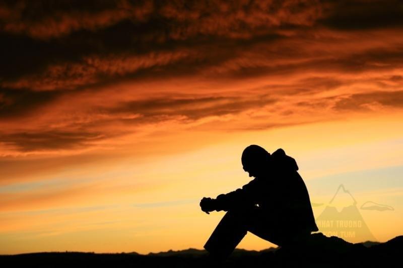 Cả đời người , rốt cuộc chúng ta đang tìm kiếm điều gì ?