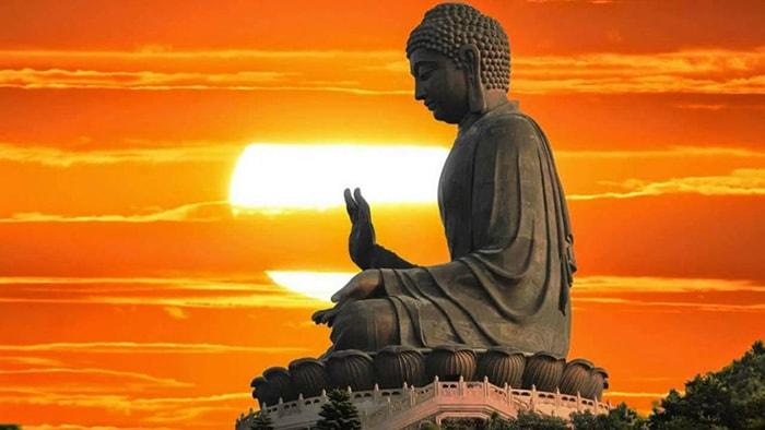 Hãy học cách cảm ơn để sống thảnh thơi