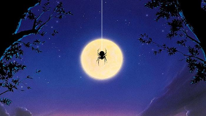 Sợ nhện là 1 nỗi sợ hãi phổ biến nhất thế giới