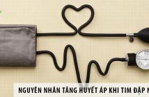 Nguyên nhân tăng huyết áp khi tim đập nhanh
