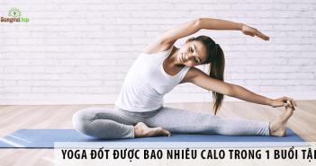 Yoga đốt được bao nhiêu calo trong một buổi tập?